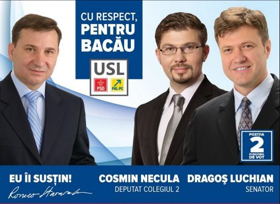 afis electoral Stavarache Necula Luchian