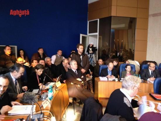 buget CJ 31 ian 2012 006