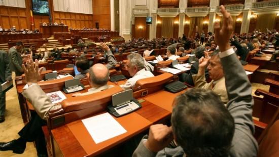 vot elena Udrea
