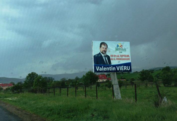 panouri electorale Moinesti 2