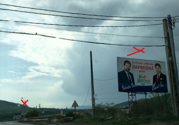 panouri electorale Moinesti